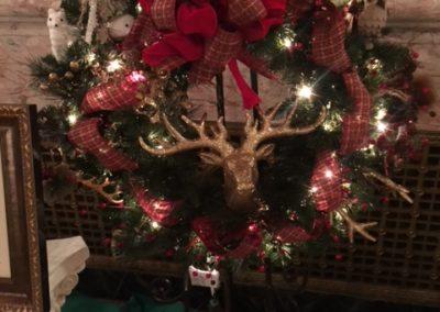 A Wildlife Christmas #9